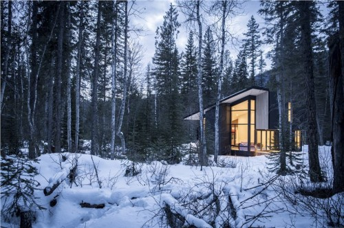 form_and_forest_rent